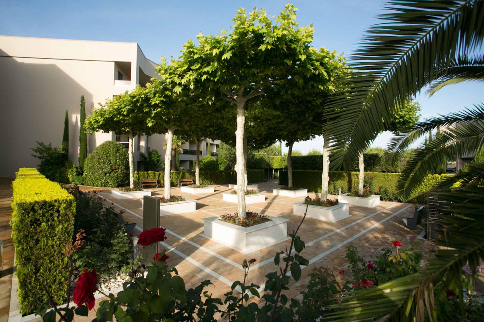 Platanus Garden